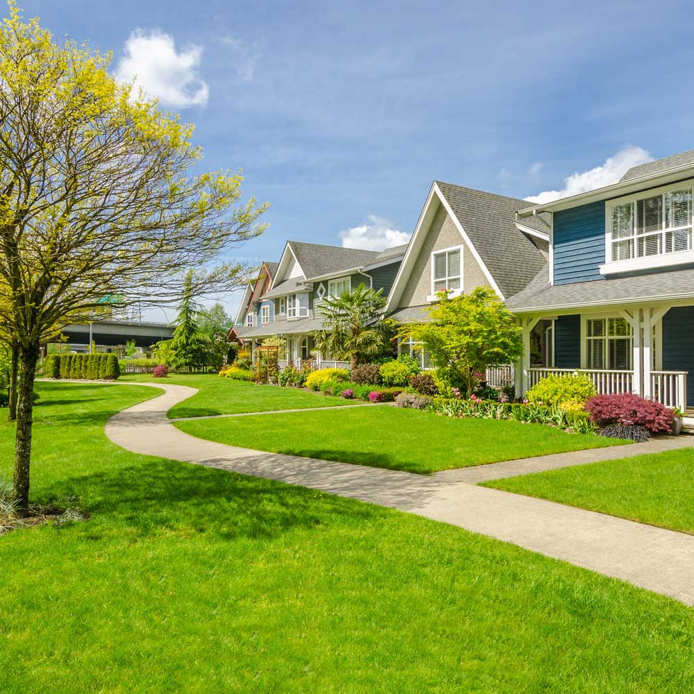 Residential Lawn Care Service
